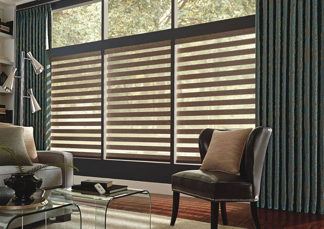 1-horizontal blinds