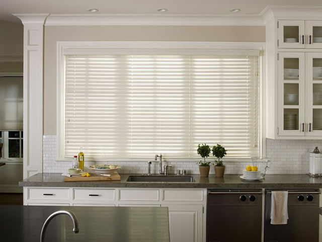 FAUX WOOD BLINDS 010919