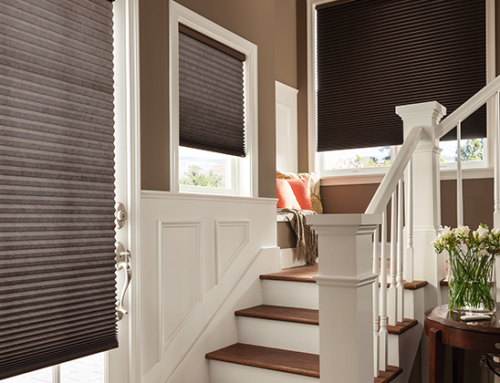 3 Things to Know About Cellular Shades